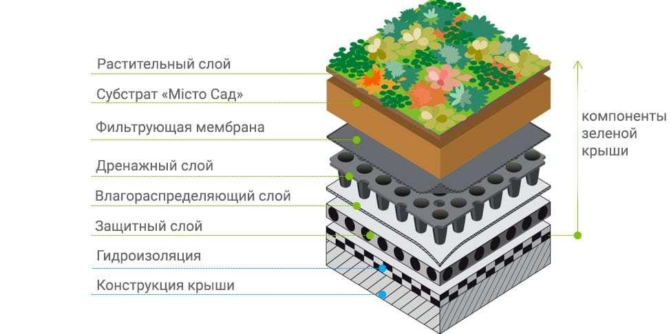 Зеленые крыши